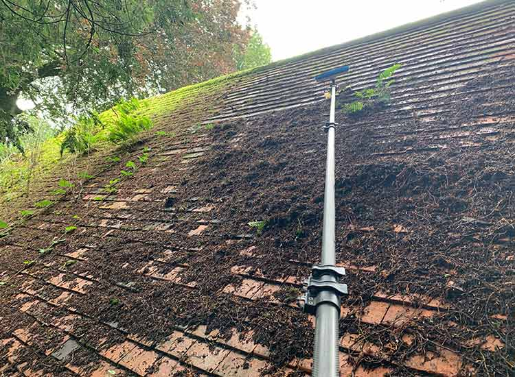 Roof cleaning in Trowbridge
